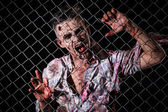 Scary zombie behind the fence — Photo