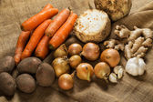 Garlic, carrots, potatoes, ginger and celery — Stock Photo