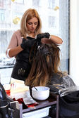 Woman during haircut — Stock Photo