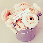 Pink roses bouquet in pot — Photo