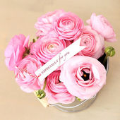 Pink roses bouquet in pot — Stock Photo