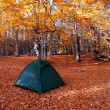 Tent in the autumn forest — Stock Photo