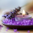 Candle in a saucer with salt baths and sprigs of lavender — Stock Photo #17680975