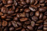 Chicco di caffè tostato — Foto Stock