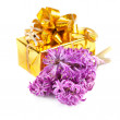 Stock Photo: Hyacinth flowers and gift box