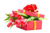 Tulips in a gift box — Стоковое фото