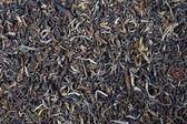 Indian black tea — Stock Photo