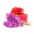 Hyacinth flowers and gift box — Stock Photo