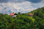 Två hus i skogen — Stockfoto
