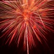 Fireworks in the night sky — Stock Photo #31036457