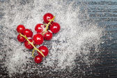 Red currant berries sprinkled with sugar — Stock Photo