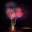 Firework over  water — Stock Photo #50391769