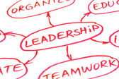 Leadership Flow Chart Red Pen — Stock Photo