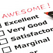 Awesome evaluation form — Stock Photo #12836028