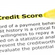 Credit Score highlighted in yellow - Stok fotoğraf