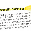 Credit Score highlighted in yellow -  