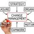 Change Management Flow Chart — Stock fotografie