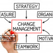 Change Management Flow Chart — Stock Photo #20640395