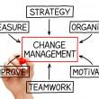 Change Management Flow Chart — Stock Photo