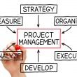 Project Management Flow Chart — Stock Photo