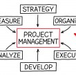 Project Management Flow Chart Red Marker — Stock Photo