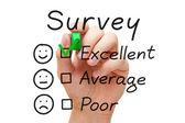 Vynikající vyhodnocení průzkumu — Stock fotografie