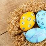 Easter eggs in the nest — Stock Photo #13366199