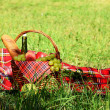 Picnic basket — Stock Photo #13366259