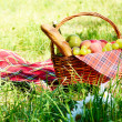 Picnic basket — Stock Photo #13366261