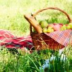 Picnic basket — Stock Photo #13366261