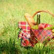 Picnic basket — Stock Photo #13366262