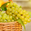 Grape harvesting — Stock Photo #13366337