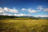 绿色草地上的风力涡轮机 — 图库照片