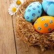Easter eggs in the nest — Stock Photo #14385813