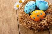 Oeufs de pâques dans le nid — Photo