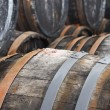 Oak wine barrels — Stock Photo