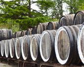 Barriles de vino de oporto roble apilados en una fila — Foto de Stock