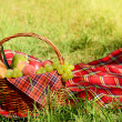 Picnic basket with red napkin fool of fruits, bread and wine — Stock Photo