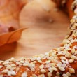 Wheat pretzel with sesame — Stok fotoğraf