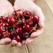 Stock Photo: Handful of cherries