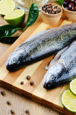 Raw trout — Stock Photo