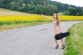 Donna con vilolin caso di strada di campagna — Foto Stock