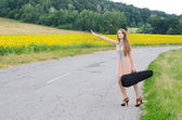 žena s vilolin případem země silniční — Stock fotografie