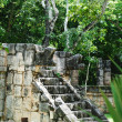 Chichen Itza — Stock Photo #12583120