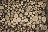 Composed of sawn wood — Stock Photo
