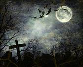 Murciélagos vuelan en la noche — Foto de Stock