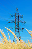High voltage lines and blue sky — Stock Photo