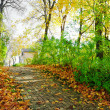 Walkway in autumn park — Stock Photo