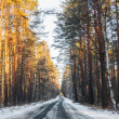 Royalty-Free Stock Photo: Snowy road