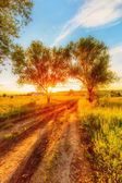 Sunset in russian countryside — Stock Photo